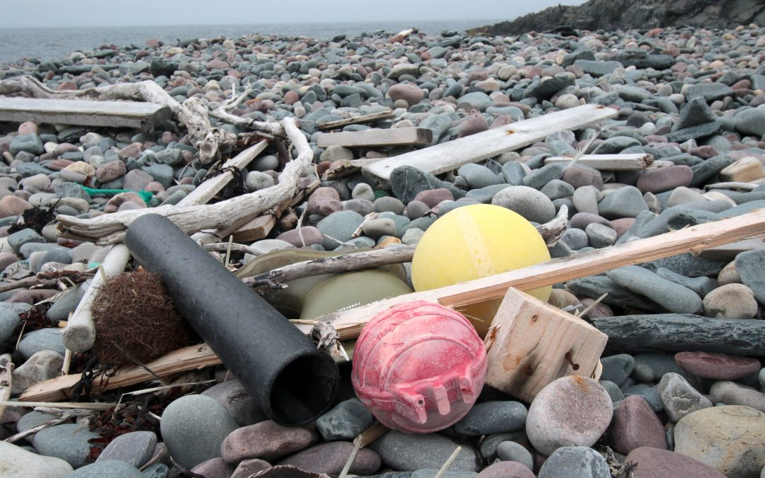 Figures from 800 beach cleanup projects give hope: – Shows that it is useful
